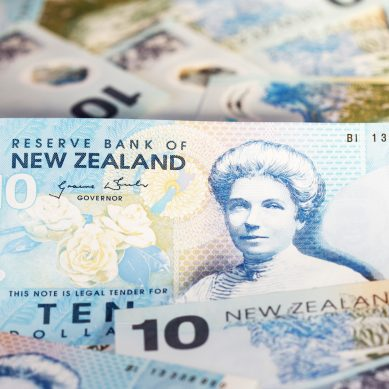 Greens: New Zealanders want more income support – study