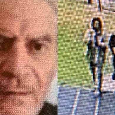 68-year-old Raymond Horn goes missing, Police look for two people of interest – video