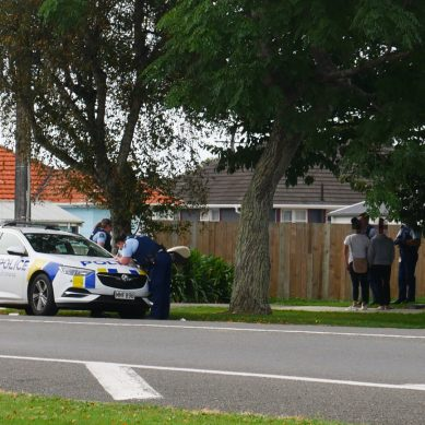 One Person arrested following Police presence on Queen Street East in Levin, Horowhenua