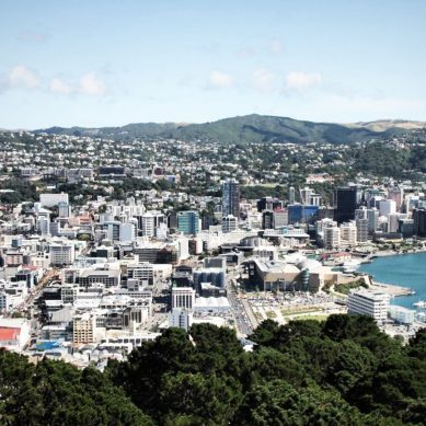 Covid-19 traces found in Wellington's wastewater, mass-testing set up to rule out Virus