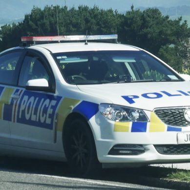 Person dead following fatal single-vehicle Ohakune crash, Manawatū District